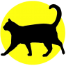 Black cat in fron of yellow disc